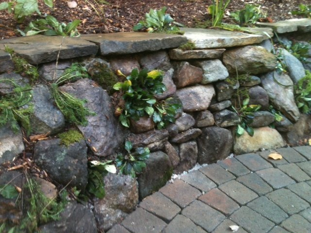 cary-landscaping-retaining-walls-image-18